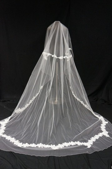 Illusions Bridal Diamond White Long Cathedral Length with Lace Detail Veil