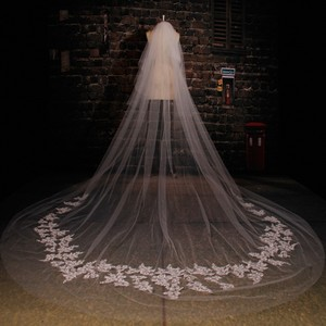 Ivory Long Lace Cathedral Bridal Veil