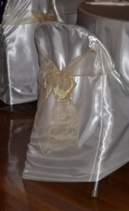 Beige/ Tan Organza Chair Ties Tableware