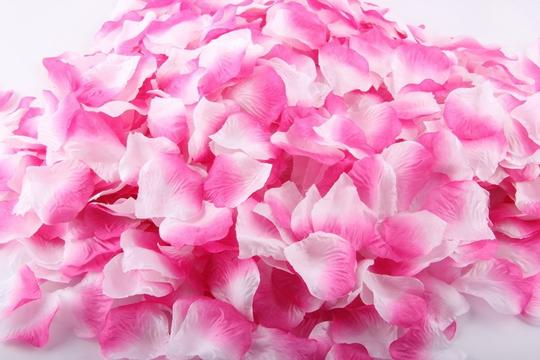 Pink and White 3000x Silk Rose Petals Bridal Party Flower Decoration Table Top Centerpieces Decor