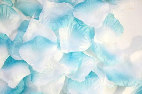Sky Blue and White 5000x Flower Rose Petal - 22 More Colors Available