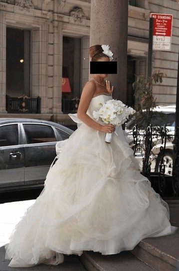 Vera Wang Ivory Organza Gisele Wedding Dress Size 4 (S)