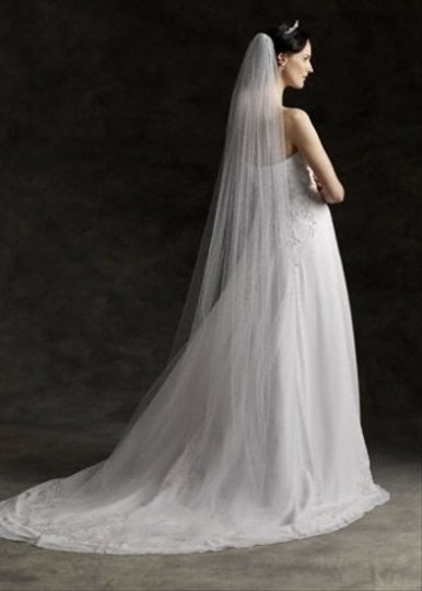 Ivory Long Cathedral Length Bridal Veil