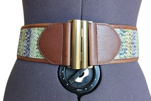 Target Gold Clasp Leather Belt