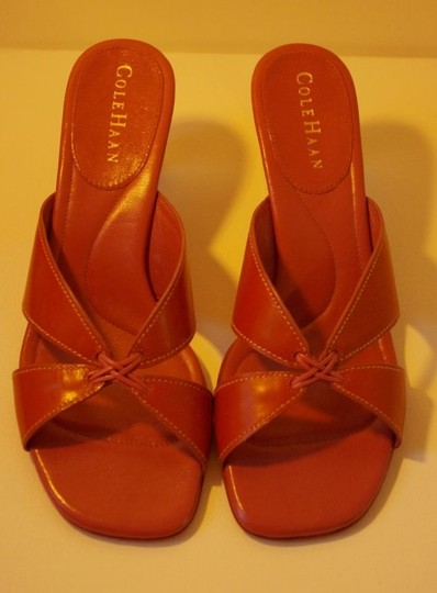 Cole Haan 3 Inch Heel Brown Leather Sandals