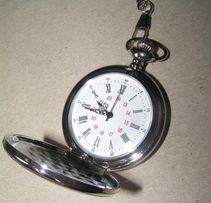 Silver Quartz Pocket Watch With Chain Free Shipping