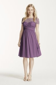 David's Bridal Wisteria F15911 Illusion Short Sleeve Mesh Dress Dress