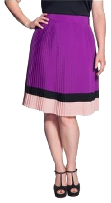Preload https://img-static.tradesy.com/item/8357899/the-limited-purple-pleated-color-block-knee-length-skirt-size-8-m-29-30-0-2-650-650.jpg