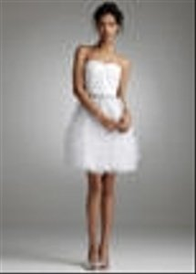 David's Bridal Short Tiered Tulle Dress Wedding Dress