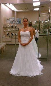 David's Bridal Organza Gown With Drop Waste And Floral Appliques Wedding Dress