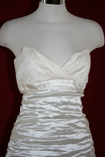 Nicole Miller Bridal Antique White Sweetheart Organza Techno Gown 14 Ea0040 Formal Wedding Dress Size 10 (M) Image 3