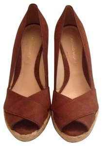 Antonio Melani Brown Mules