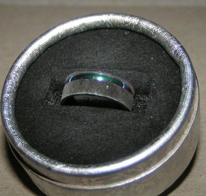 Brushed Stainless Rainbow Band Ring Free Shipping