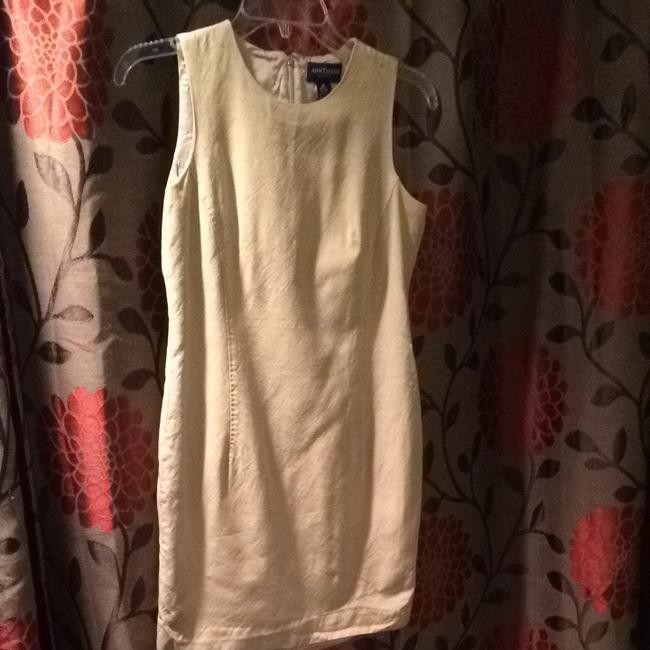 Ann Taylor short dress Tan Cream on Tradesy