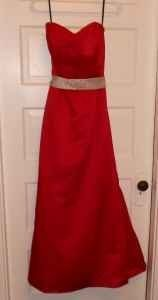 Eden Red Have To Check Dress