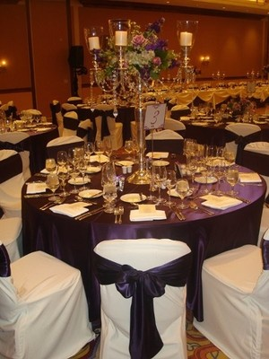 100 White Polyester Banquet Chair Covers