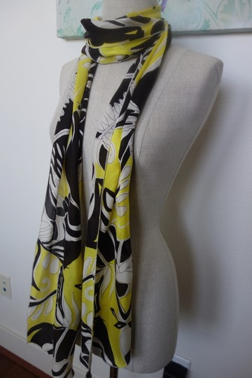 Other Beautiful Scarf