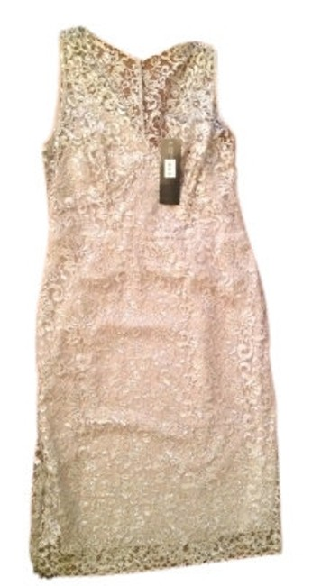 Preload https://item3.tradesy.com/images/jones-new-york-champagne-sheer-lace-metallic-accents-mini-night-out-dress-size-6-s-9437-0-0.jpg?width=400&height=650