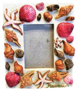 Seashell Frame from Hawaii [ Roxanne Anjou Closet ]