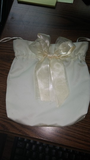 David's Bridal Ivory Dollar Dance Pouch