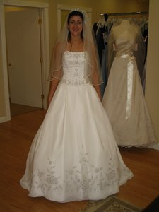 Henry Roth Ball Gown Wedding Dress