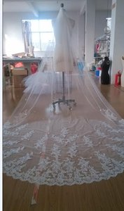 Gorgeous Lace Applique Cathedral Veil Ivory