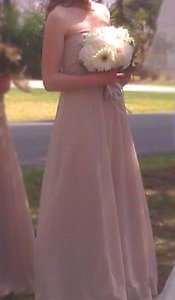David's Bridal Champagne/Beige Chiffon Long Sheer Beaded Neckline Style F14867 Traditional Bridesmaid/Mob Dress Size 4 (S)