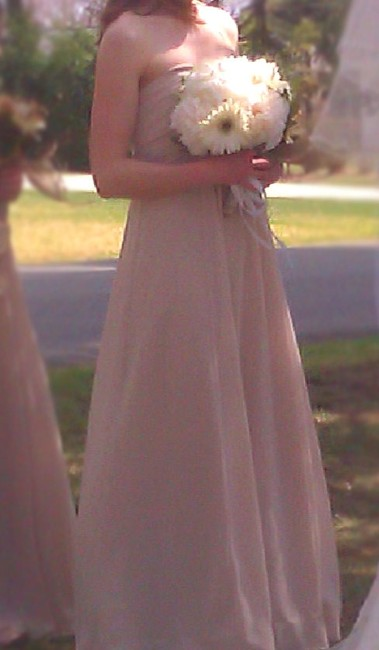Item - Champagne/Beige Chiffon Long Sheer Beaded Neckline Style F14867 Traditional Bridesmaid/Mob Dress Size 4 (S)