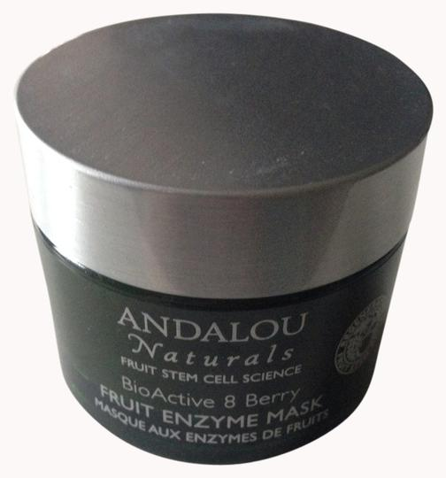 Andalou Andalou Naturals BioActive 8 Berry Fruit Enzyme Mask