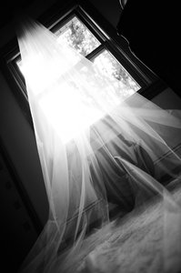 Vera Wang Ivory Long Two-tier Cathedral Length with Raw Edge Style Bridal Veil
