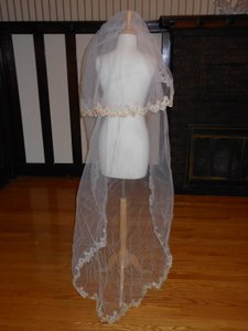 Ivory / Gold and Light Pink Long Bridal Veil