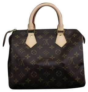 Louis Vuitton Speedy 20 Leather Tote in Monogram