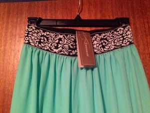 Francesca's Skirt Mint